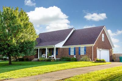 Mt Washington Single Family Home For Sale: 726 Equinox Blvd