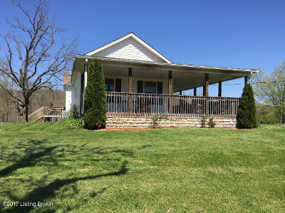 Henry County Single Family Home For Sale: 3130 River Rd