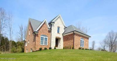 Oldham County Single Family Home For Sale: 13007 Vista Dr
