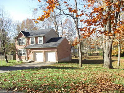 Carroll County Single Family Home For Sale: 103 Mojave Trail