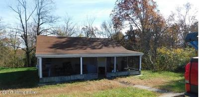 Meade County Single Family Home For Sale: 295 Highway 376