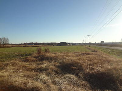 Hardinsburg Residential Lots & Land For Sale: 9 S Hwy.261