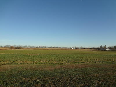 Hardinsburg Residential Lots & Land For Sale: 22 Hwy. 60