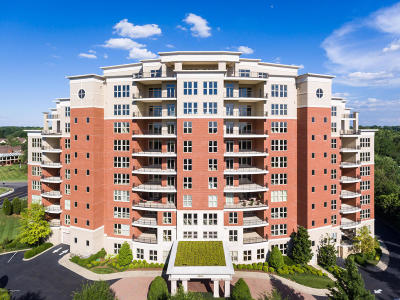Jefferson County Condo/Townhouse For Sale: 6600 Seminary Woods Pl #806