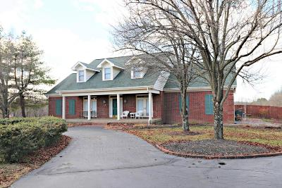 Simpsonville Single Family Home For Sale: 319 Fields Ln
