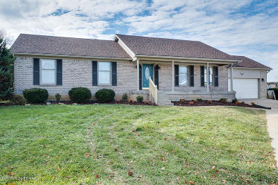 Shelby County Single Family Home For Sale: 41 Bald Mountain Cir