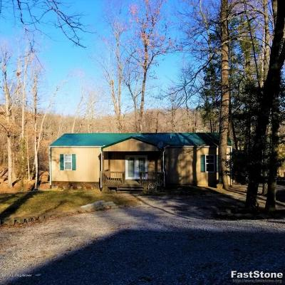 Leitchfield, Falls Of Rough, Mcdaniels, Madrid, Hudson, Rough River, Westview, Axtel, Cub Run, Bee Springs, Mammoth Cave, Wax Single Family Home For Sale: 1126 Paradise Acres Rd