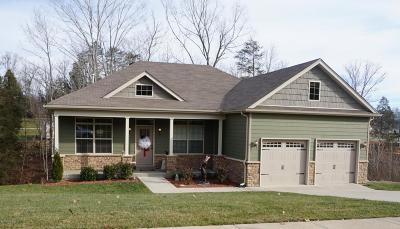 Mt Washington Single Family Home For Sale: 150 Hidden Falls Dr