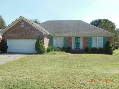 Oldham County Rental For Rent: 12002 Valley Dr