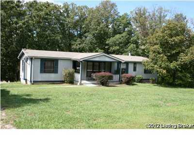 Henry County Single Family Home For Sale: 699 Lecompte Bottom Rd