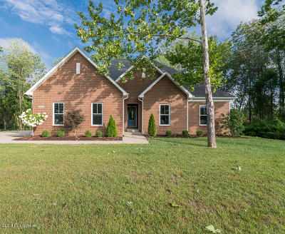 Oldham County Single Family Home For Sale: 13005 Vista Dr