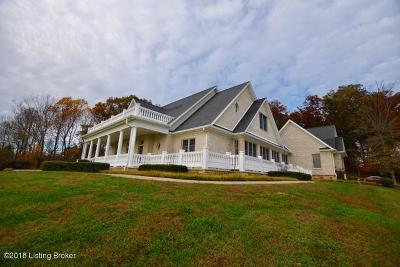 Elizabethtown Single Family Home For Sale: 3288 Rineyville Rd
