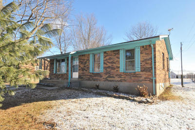 Henry County Single Family Home For Sale: 468 Melodye Ln