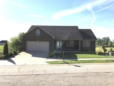 Hardin County Single Family Home For Sale: 104 Victory Lake Dr