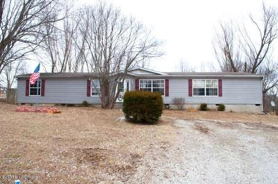 Henry County Single Family Home For Sale: 180 Summit Dr