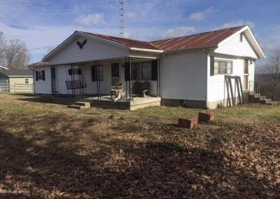 Edmonson County Single Family Home For Sale: 354 Gap Hill Rd