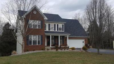 Henry County Single Family Home For Sale: 570 Cedar Run Rd