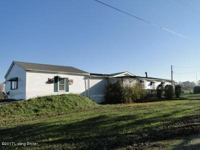 Meade County Single Family Home For Sale: 129 Henry Hathorne Ln