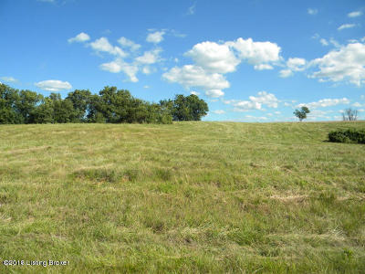 Shelbyville Residential Lots & Land For Sale: 55 Indian Springs Trace
