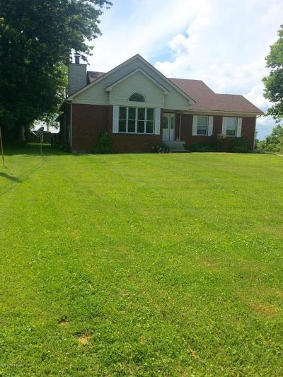 Henry County Single Family Home For Sale: 107 Woods Pike