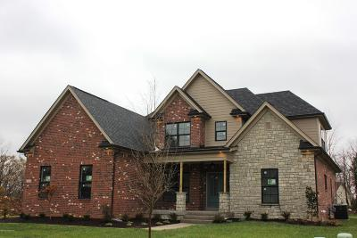 Single Family Home For Sale: 14804 Faye Meadow Ct