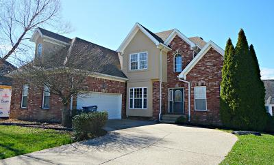 Simpsonville Single Family Home For Sale: 304 Birdie Ct