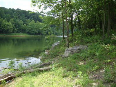 Leitchfield KY Residential Lots & Land For Sale: $11,900
