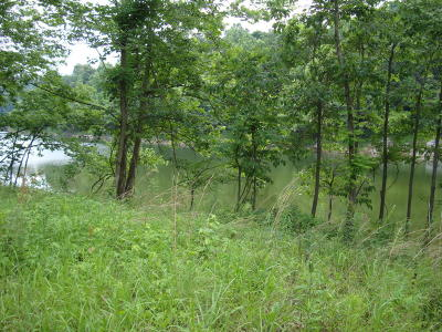Residential Lots & Land For Sale: Lot 84 Gannaway Rd