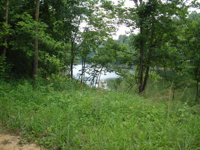 Leitchfield KY Residential Lots & Land For Sale: $9,900