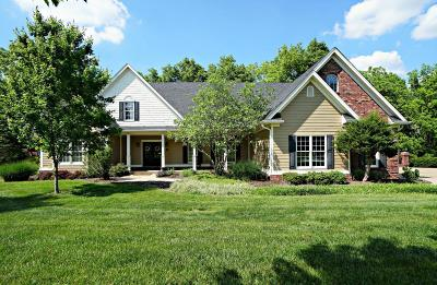 Simpsonville Single Family Home For Sale: 270 Bellefonte Ct