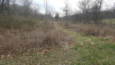 Residential Lots & Land For Sale: 7006 Shibley Ave