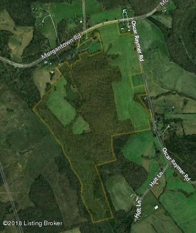 Residential Lots & Land For Sale: 6811 Morgantown Rd