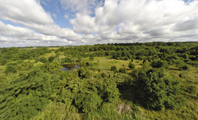 Henry County Farm For Sale: 117.2 L'esprit Pkwy