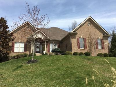 Louisville Single Family Home For Sale: 211 Waterstone Way