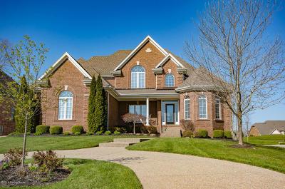 Louisville Single Family Home For Sale: 15201 Chestnut Ridge Cir