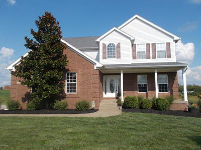 Henry County Single Family Home For Sale: 115 Jericho Ridge Rd
