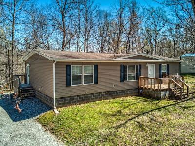 Leitchfield Single Family Home For Sale: 280 Rock Creek Dr