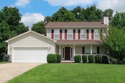 Meade County, Bullitt County, Hardin County Single Family Home For Sale: 667 Arlington Dr