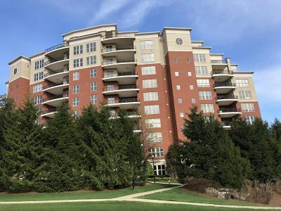 Louisville Condo/Townhouse For Sale: 6600 Seminary Woods Pl #1202