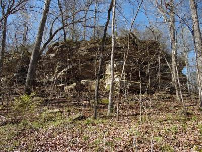 Leitchfield Residential Lots & Land For Sale: Tract 3 W Briarwood