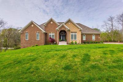 Oldham County Single Family Home For Sale: 12311 Ridgeview Dr