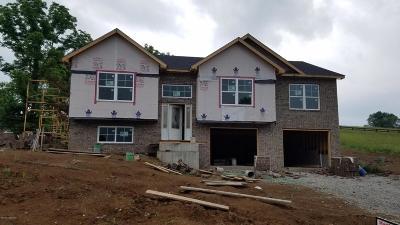 Taylorsville Single Family Home For Sale: 340 Oak Tree Way