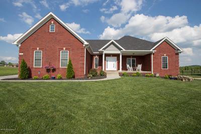 Bullitt County Single Family Home For Sale: 294 Heritage Hill Pkwy
