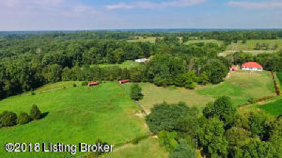 Oldham County Single Family Home For Sale: 1518 Us-42