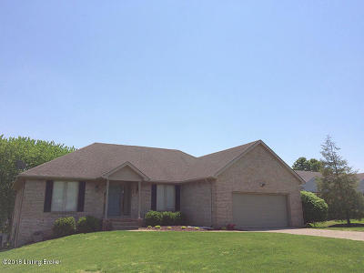 Oldham County Single Family Home For Sale: 12008 Valley Dr