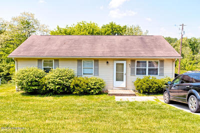 Henry County Single Family Home For Sale: 293 Melodye Ln