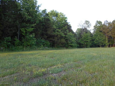 Taylorsville Residential Lots & Land For Sale: 98 Crescent Ridge Dr