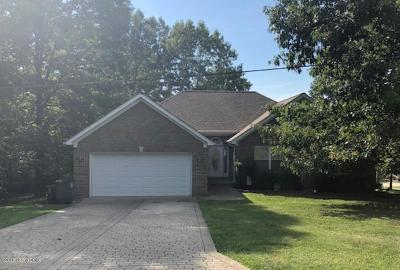 Meade County Single Family Home For Sale: 48 Knotty Pine Ct