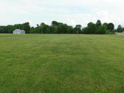 Leitchfield Residential Lots & Land For Sale: 259 Brandenburg Rd