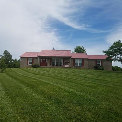 Single Family Home For Sale: 460 Perkinson Ln